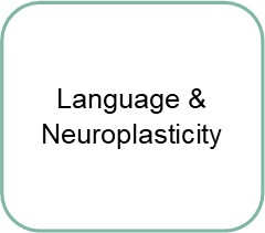 neuromodulation and applied neuroplasticity